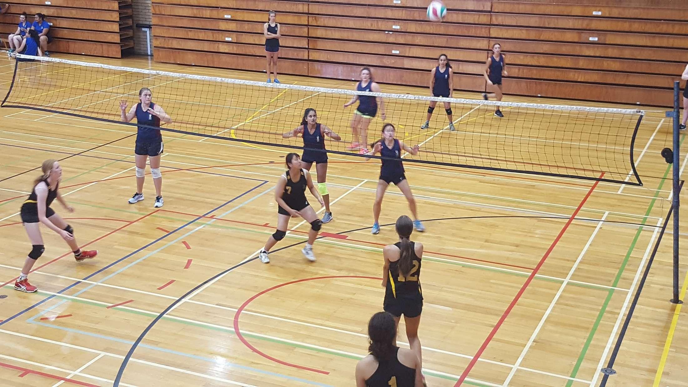 volleyball - sports - sport